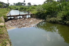 WATER POLLUTION. Heavily polluted river inlet with various garbage along shore and floating on water Stock Image