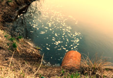 Water pollution. Industrial sewage waters / waste products going out of a pipe into river Stock Photography