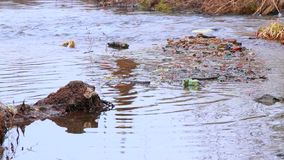 Water pollution. natural disaster. nature in danger. polluted environment. stock footage