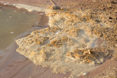Water pollution Stock Photos