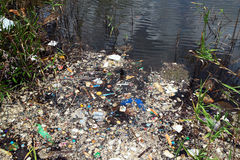 Water pollution in river Royalty Free Stock Photography
