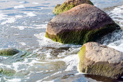Water pollution in river - Global warming Stock Photo