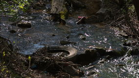 Water pollution in river with trash stock video footage