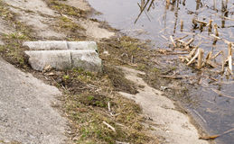 Water pollution sewer Stock Photography