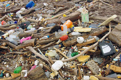 Water pollution. wastes on the beach Stock Photo
