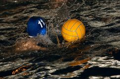 Water-polo Stock Image