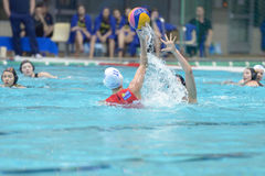 Free Water Polo Stock Images - 30518254