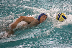 Water Polo Action Stock Photos