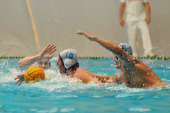Water-polo action Royalty Free Stock Photo