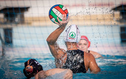 Water polo action game Stock Image