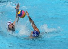 Water Polo / Ball Hunters Stock Images