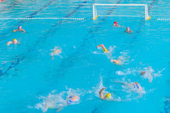 Water polo competition Royalty Free Stock Image