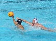 Water Polo / Effort To Steal A Ball Stock Images