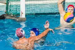 Water-Polo Nationals Action Stock Photo
