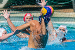 Water-Polo Nationals Action Royalty Free Stock Image