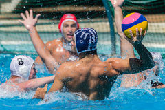 Water-Polo Nationals Action