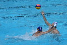 Water Polo / Passing A Ball Under Pressure Stock Images