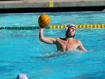 Water Polo Player royalty free stock photo