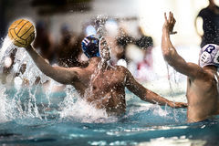 Water polo player Royalty Free Stock Photography
