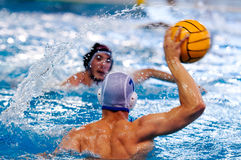 Water polo players. Two water polo players during a game Stock Image