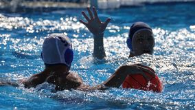 Water polo players during the competition match, Sport stock photography