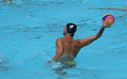 Water Polo / Shooter royalty free stock photos