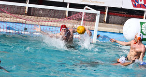 Water Polo - shot Stock Photography