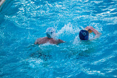 Water Polo. Is a team water sport Stock Photography