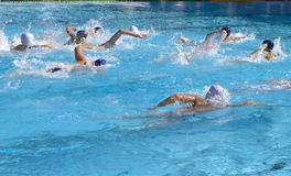 Water Polo. Waterpolo match the sunny pool Royalty Free Stock Images