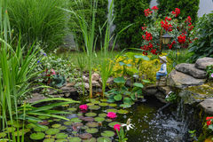 Water pond stock photography