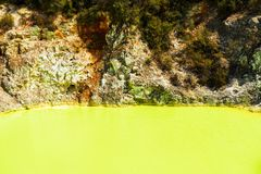 Water pond, made yellow by sulfur in Wai-O-Tapu Geothermal Wonderland, Rotorua, New Zealand. Copy space for text.  stock photos