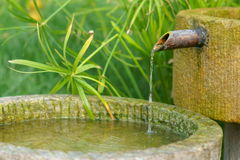 Water pond Royalty Free Stock Images