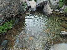 Water pond. In uttrakhand Royalty Free Stock Photo