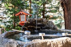 The water in the pond which is considered shrine in Japan that is located in a forest. Where people come to pray royalty free stock photos