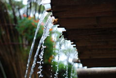 Water pouring from Bamboo roof Royalty Free Stock Photo
