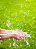 Water pouring into children's hands Stock Image