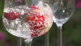 Water is Pouring into a Glass with Strawberries