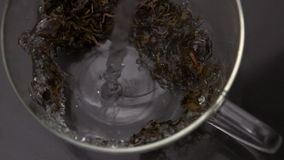Water pouring over loose herbal tea in glass cup stock video