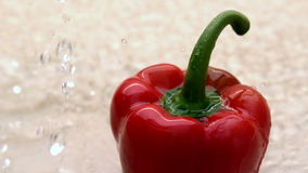 Water pouring on red pepper stock video