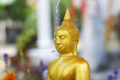 Water pouring to Buddha statue Royalty Free Stock Image