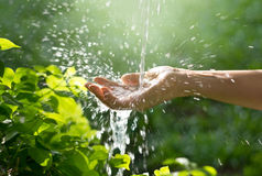 Water pouring in woman hand on nature background, environment co royalty free stock photos