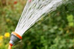 Water pours garden Stock Photos