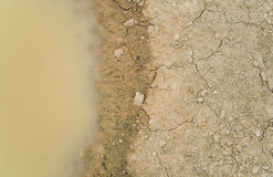 Water puddle on dirty soil ground.  Stock Photography