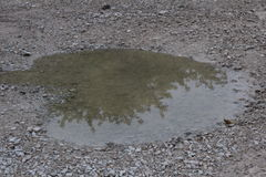 Water puddle. Sideways heart shaped water puddle Royalty Free Stock Photography
