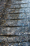 Water puddles on a stone path Stock Photos