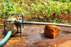 Water pump in the field during dry season Stock Images