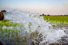 Water pump. Powerful Water Flowing from a Large Pipe Pump in Rice Field at Countryside in Center of Thailand stock image