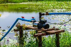 Water pump supply garden farm strawberries berries in field Stock Image