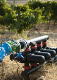 Water pumps for irrigation of vineyards stock photo
