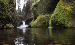 Water Punch Bowl Falls Columbia River Gorge Stock Photography
